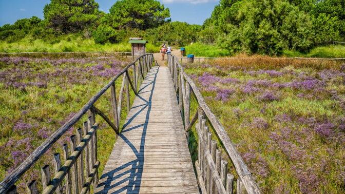Giardino Botanico Litoraneo e Delta del Po